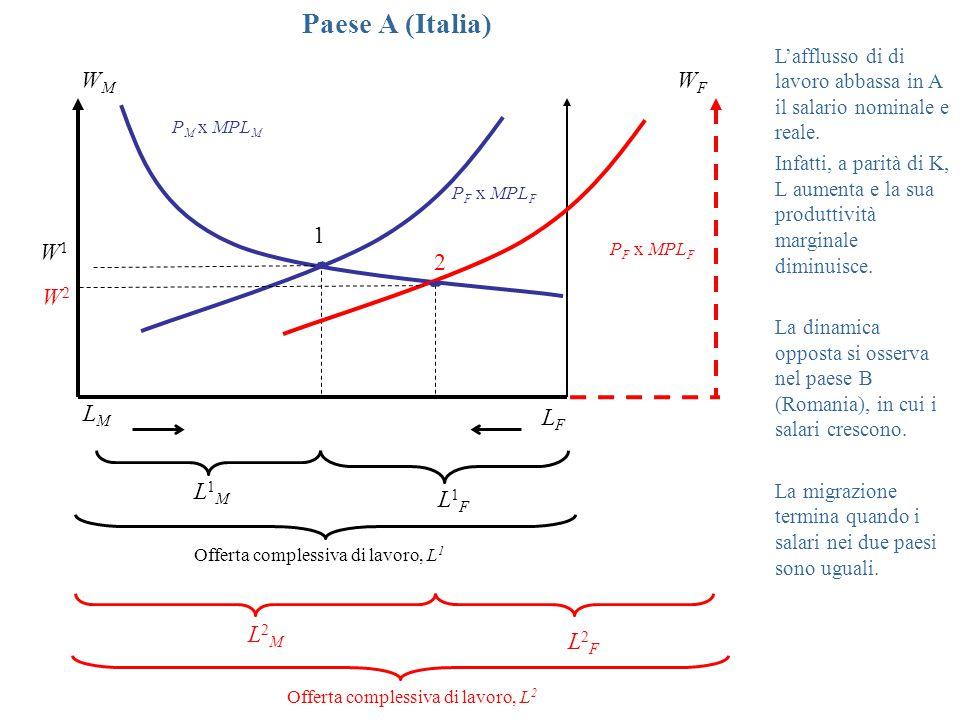 P M x MPL M P F x MPL F WMWM WFWF W1W1 1 L1ML1M L1FL1F Offerta complessiva di lavoro, L 1 LMLM LFLF Paese A (Italia) L2ML2M L2FL2F Offerta complessiva