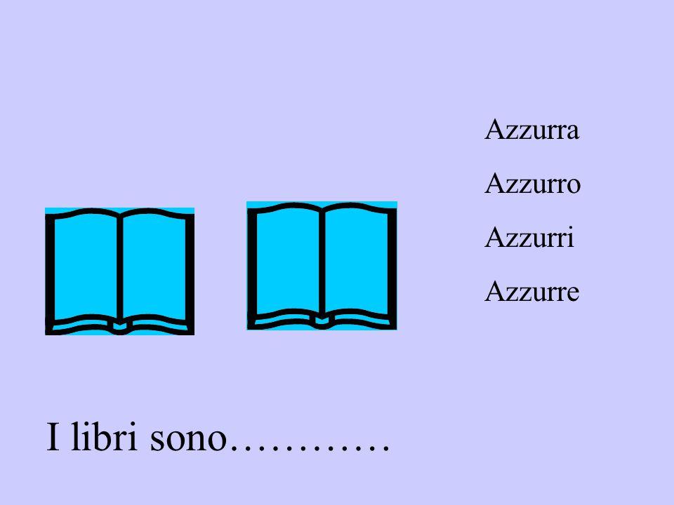 I libri sono………… Azzurra Azzurro Azzurri Azzurre