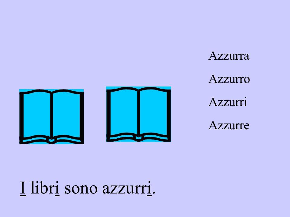 I libri sono azzurri. Azzurra Azzurro Azzurri Azzurre