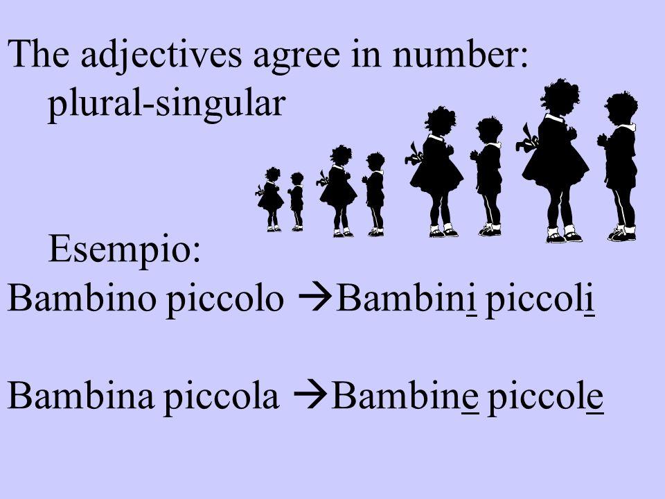 The adjectives agree in number: plural-singular Esempio: Bambino piccolo  Bambini piccoli Bambina piccola  Bambine piccole