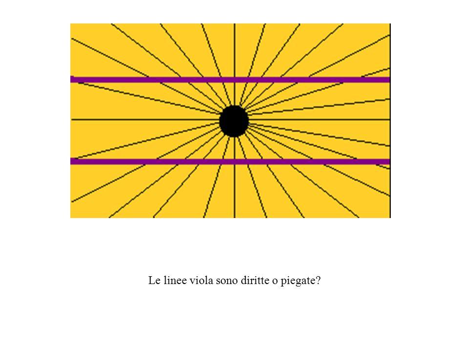Le linee viola sono diritte o piegate?