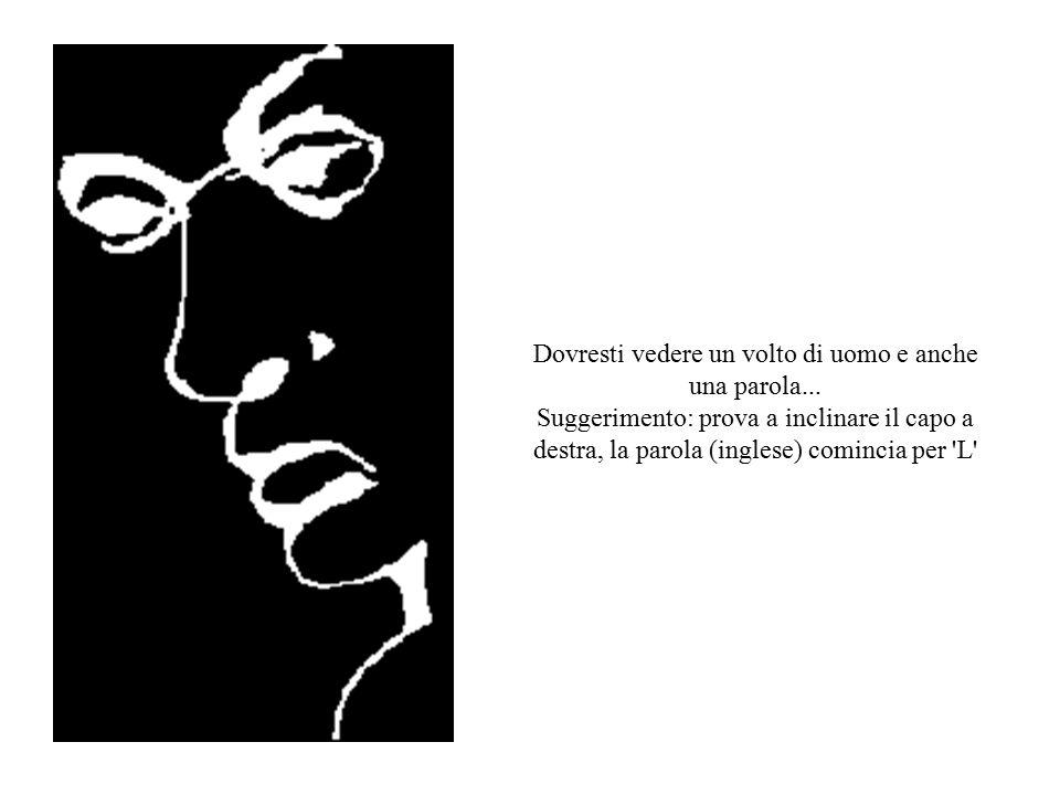 Dovresti vedere un volto di uomo e anche una parola... Suggerimento: prova a inclinare il capo a destra, la parola (inglese) comincia per 'L'