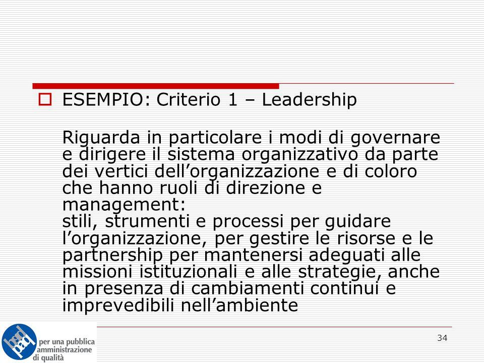 34  ESEMPIO: Criterio 1 – Leadership Riguarda in particolare i modi di governare e dirigere il sistema organizzativo da parte dei vertici dell'organizzazione e di coloro che hanno ruoli di direzione e management: stili, strumenti e processi per guidare l'organizzazione, per gestire le risorse e le partnership per mantenersi adeguati alle missioni istituzionali e alle strategie, anche in presenza di cambiamenti continui e imprevedibili nell'ambiente