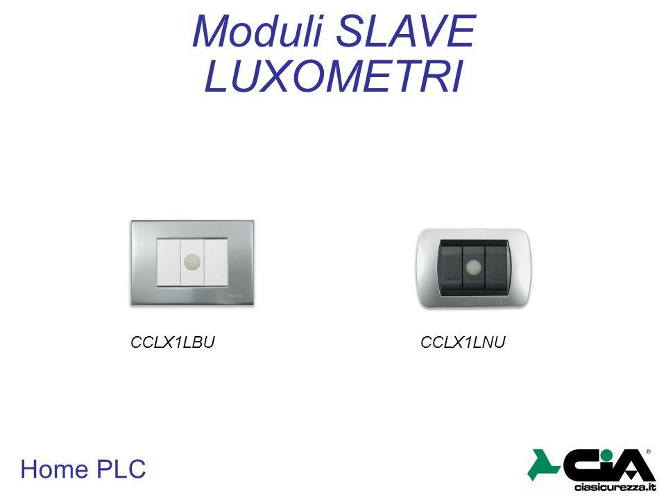 Home PLC LUXOMETRI Moduli SLAVE CCLX1LBUCCLX1LNU