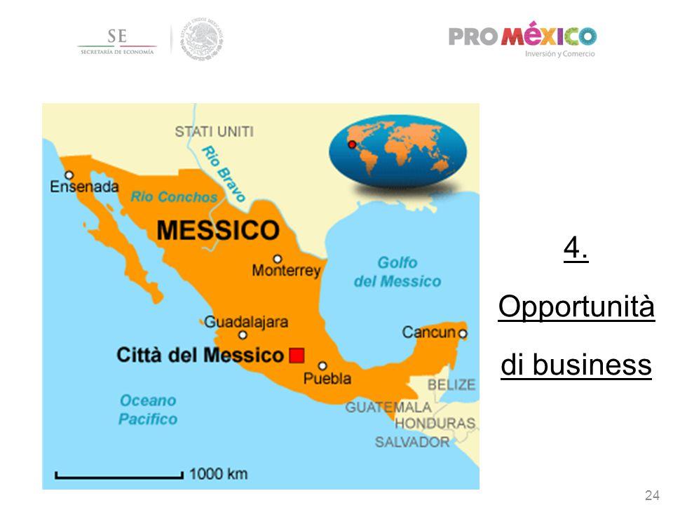 4. Opportunità di business 24