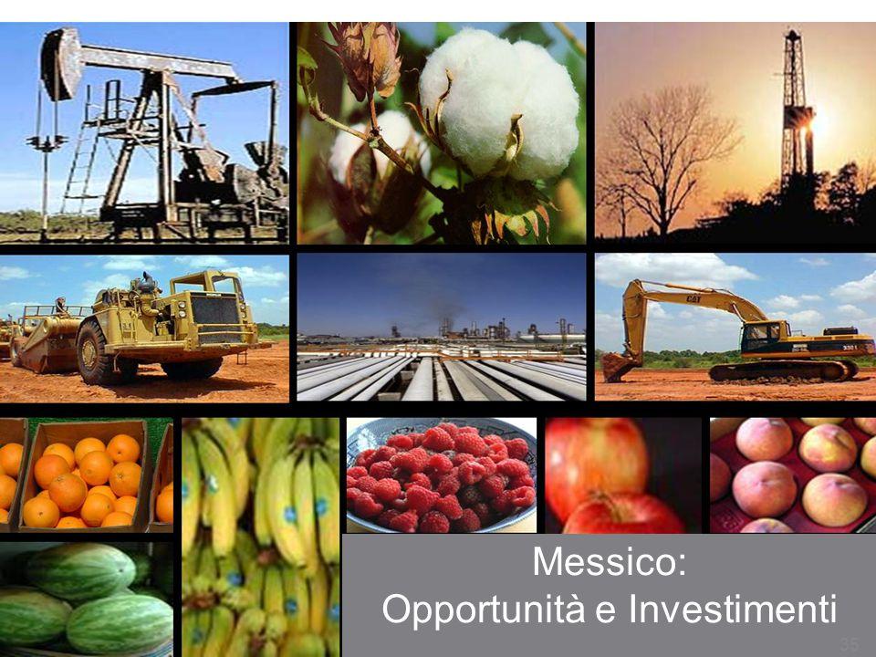 Messico: Opportunità e Investimenti 35
