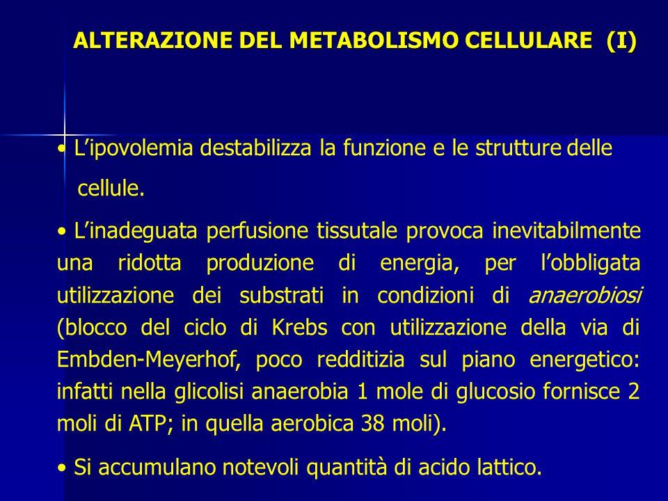 ALTERAZIONE DEL METABOLISMO CELLULARE (I) L'ipovolemia destabilizza la funzione e le strutture delle cellule.