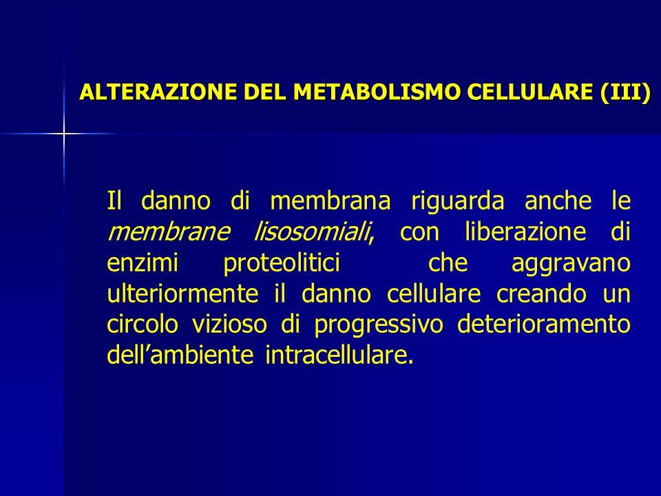 Il danno di membrana riguarda anche le membrane lisosomiali, con liberazione di enzimi proteolitici che aggravano ulteriormente il danno cellulare creando un circolo vizioso di progressivo deterioramento dell'ambiente intracellulare.