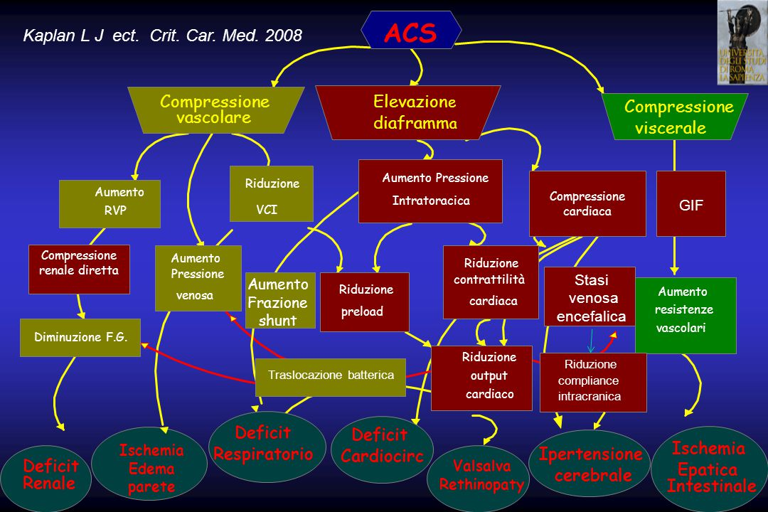 ACS Compressione vascolare Elevazion e diaframm a Compressione viscerale Aumento RVP Aumento Pressione venosa Riduzione VCI Diminuzione F.G. Deficit R