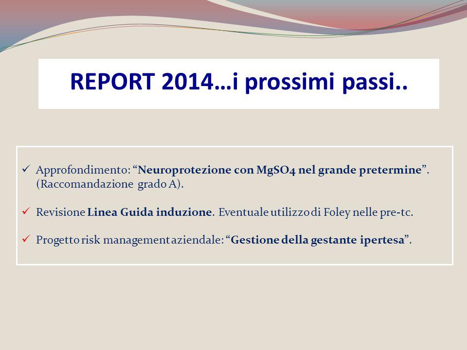 """Approfondimento: """"Neuroprotezione con MgSO4 nel grande pretermine"""". (Raccomandazione grado A). Revisione Linea Guida induzione. Eventuale utilizzo di"""