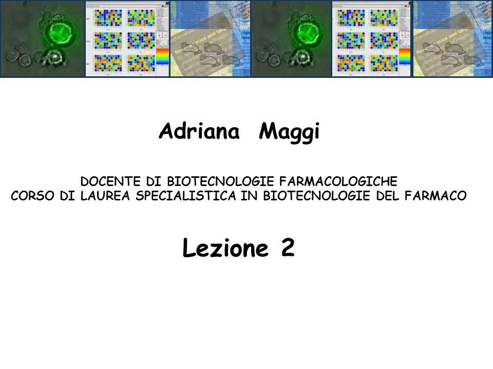 Adriana Maggi DOCENTE DI BIOTECNOLOGIE FARMACOLOGICHE CORSO DI LAUREA SPECIALISTICA IN BIOTECNOLOGIE DEL FARMACO Lezione 2