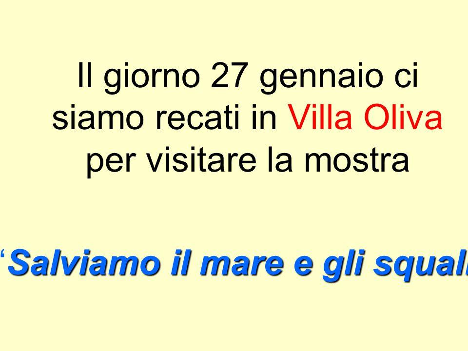 MOSTRA REALIZZATA DAGLI ALUNNI DELLE CLASSI QUINTE Scuola Gianni Rodari Anno scolastico 2008/2009