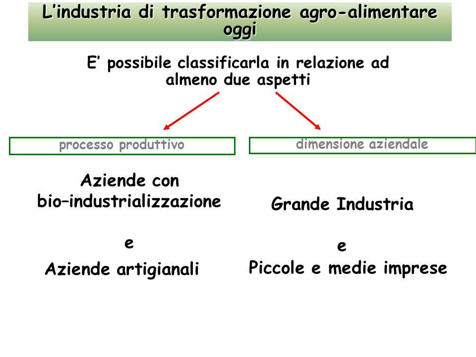L'industria di trasformazione agro-alimentare oggi E' possibile classificarla in relazione ad almeno due aspetti processo produttivo dimensione aziendale Aziende con bio–industrializzazione e Aziende artigianali Grande Industria e Piccole e medie imprese