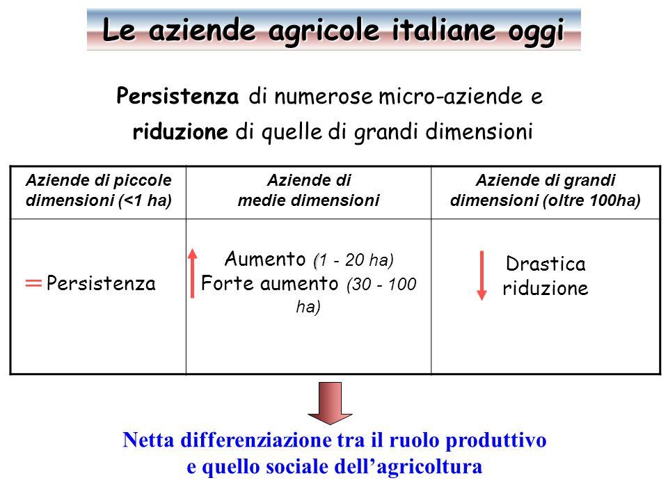Persistenza di numerose micro-aziende e riduzione di quelle di grandi dimensioni Aziende di piccole dimensioni (<1 ha) Aziende di medie dimensioni Aziende di grandi dimensioni (oltre 100ha) Persistenza ( Aumento (1 - 20 ha) Forte aumento (30 - 100 ha) Drastica riduzione = Netta differenziazione tra il ruolo produttivo e quello sociale dell'agricoltura Le aziende agricole italiane oggi