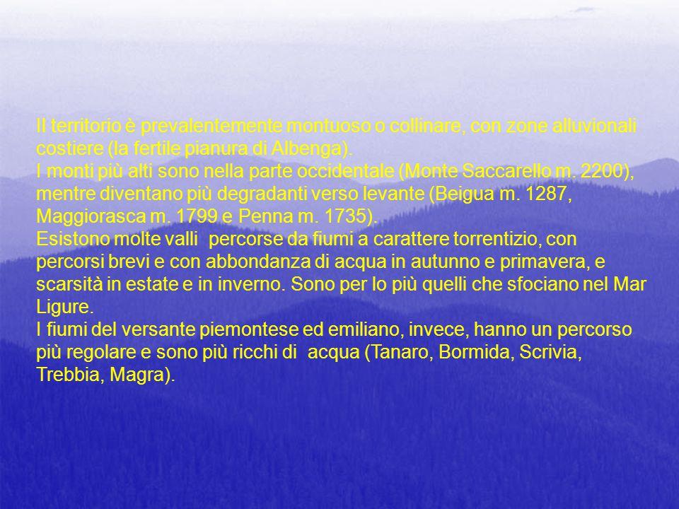 Il territorio è prevalentemente montuoso o collinare, con zone alluvionali costiere (la fertile pianura di Albenga). I monti più alti sono nella parte