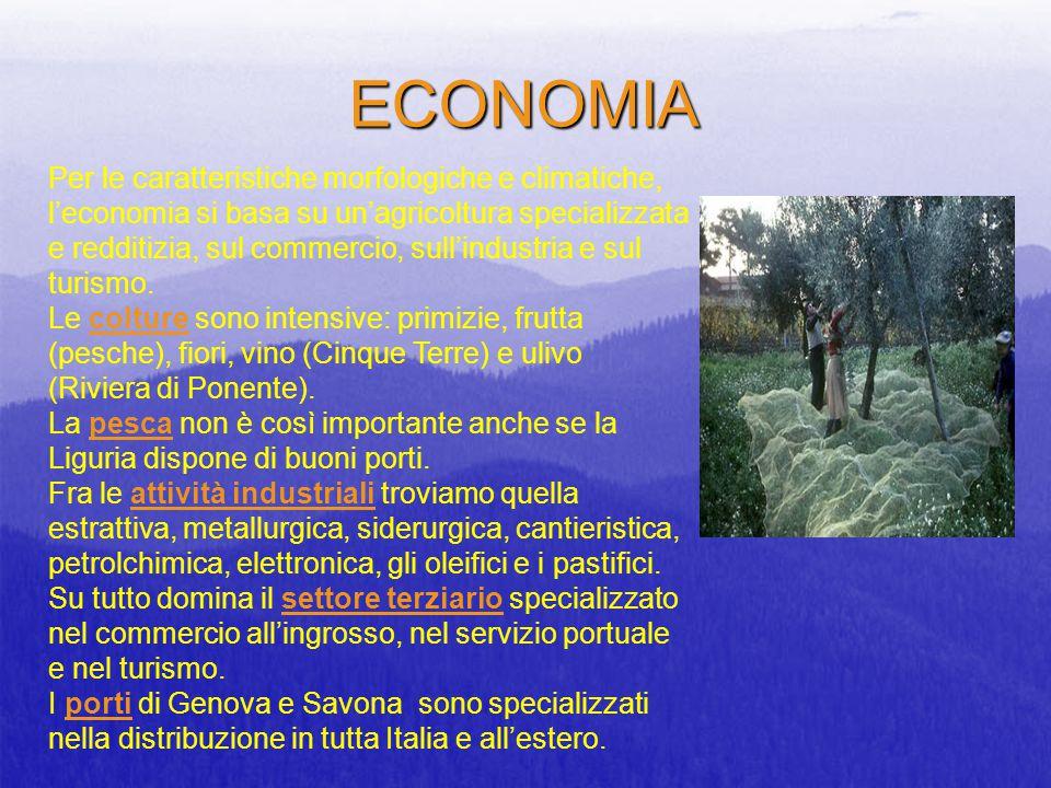 ECONOMIA Per le caratteristiche morfologiche e climatiche, l'economia si basa su un'agricoltura specializzata e redditizia, sul commercio, sull'indust