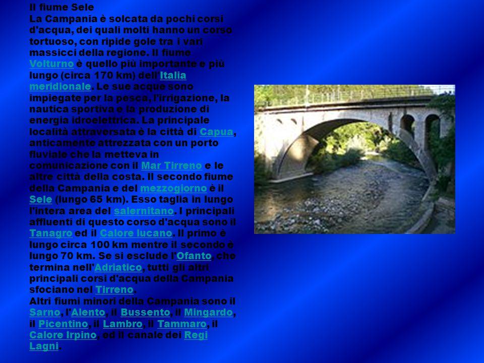 Il fiume Sele La Campania è solcata da pochi corsi d'acqua, dei quali molti hanno un corso tortuoso, con ripide gole tra i vari massicci della regione