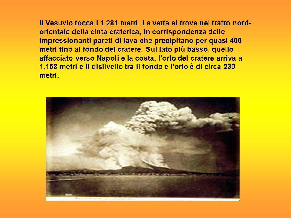 Il Vesuvio tocca i 1.281 metri. La vetta si trova nel tratto nord- orientale della cinta craterica, in corrispondenza delle impressionanti pareti di l