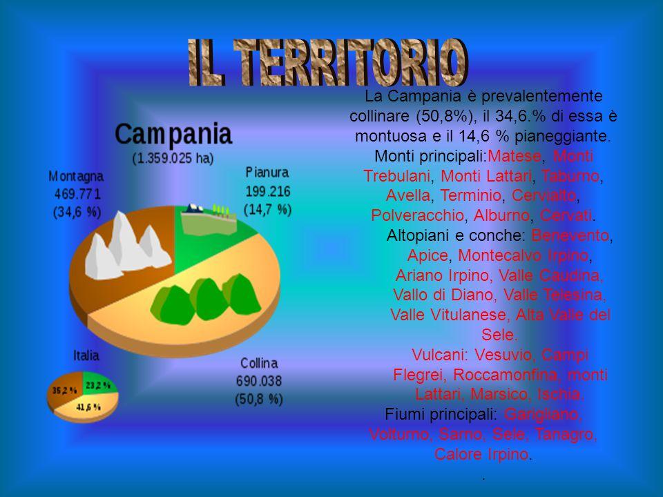 La Campania è prevalentemente collinare (50,8%), il 34,6.% di essa è montuosa e il 14,6 % pianeggiante.