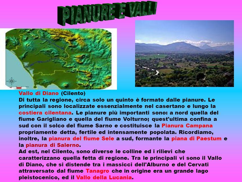 Vallo di Diano (Cilento) Di tutta la regione, circa solo un quinto è formato dalle pianure. Le principali sono localizzate essenzialmente nel casertan