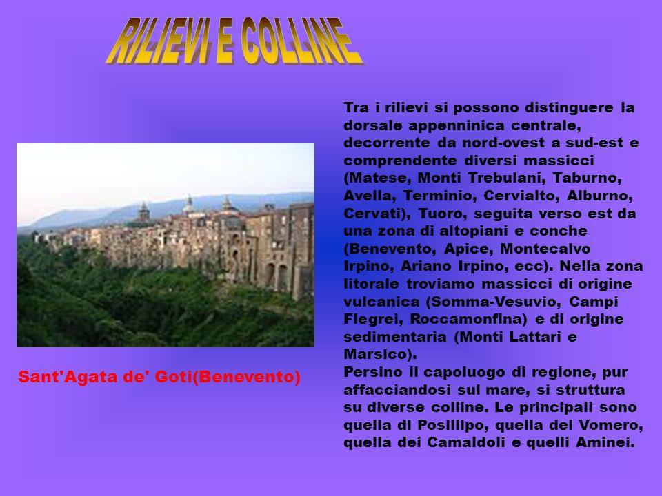 Le coste campane, incluse quelle delle isole del golfo di Napoli, sono tutte bagnate dal mar Tirreno.