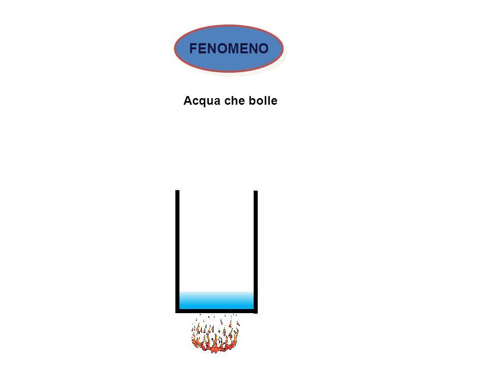 Acqua che bolle FENOMENO