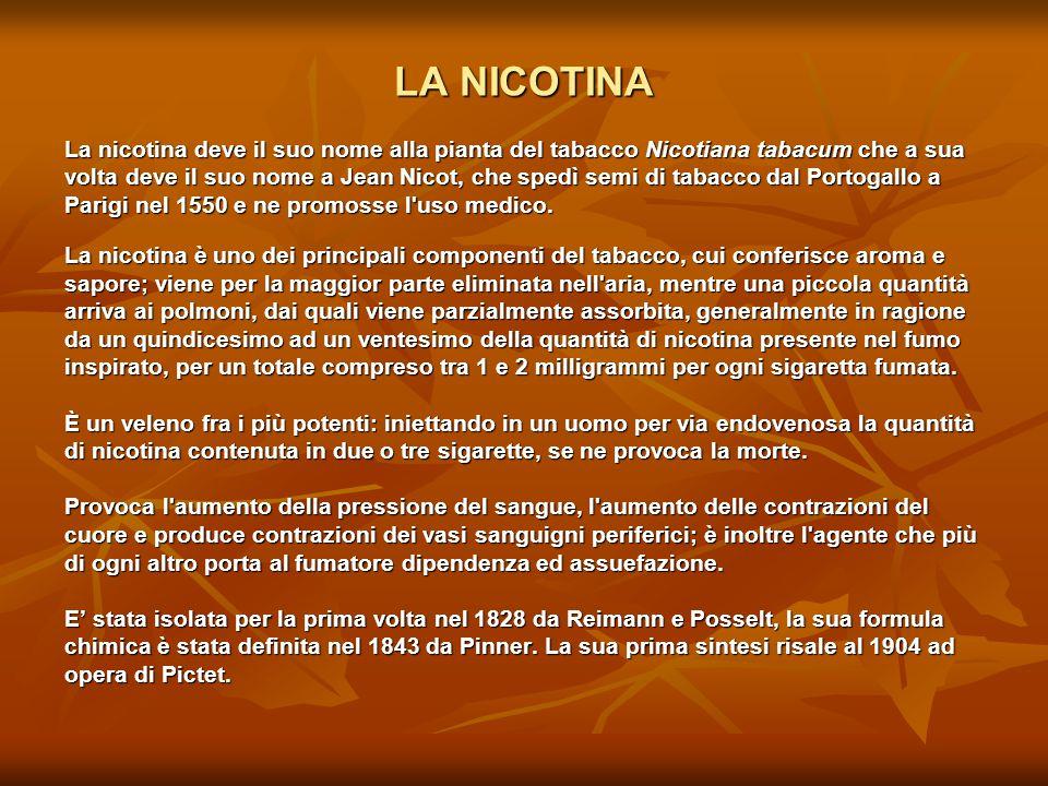 LA NICOTINA La nicotina deve il suo nome alla pianta del tabacco Nicotiana tabacum che a sua volta deve il suo nome a Jean Nicot, che spedì semi di ta