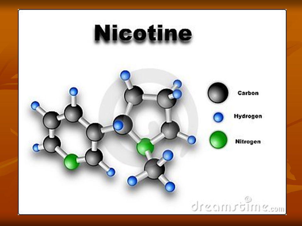 EFFETTI SULL'ORGANISMO UMANO In piccole dosi, la nicotina ha un effetto stimolante; aumenta l attività, l attenzione e la memoria.