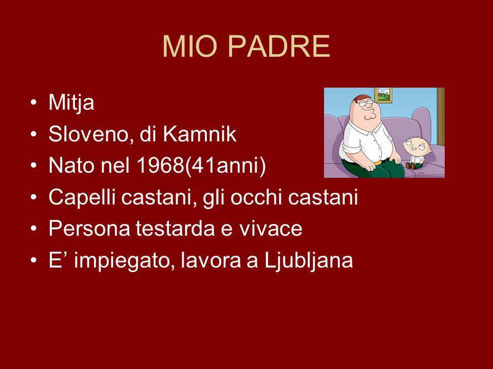 MIO PADRE Mitja Sloveno, di Kamnik Nato nel 1968(41anni) Capelli castani, gli occhi castani Persona testarda e vivace E' impiegato, lavora a Ljubljana