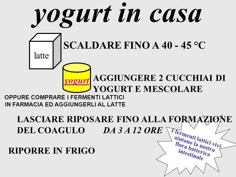 Apporto calorico Apporto calorico nutrizionale tipico del latte tipico del latte YOGURT YOGURT TIPOLOGIA YOGURT YOGURT YOGURT INTERO YOGURT SCREMATO Y