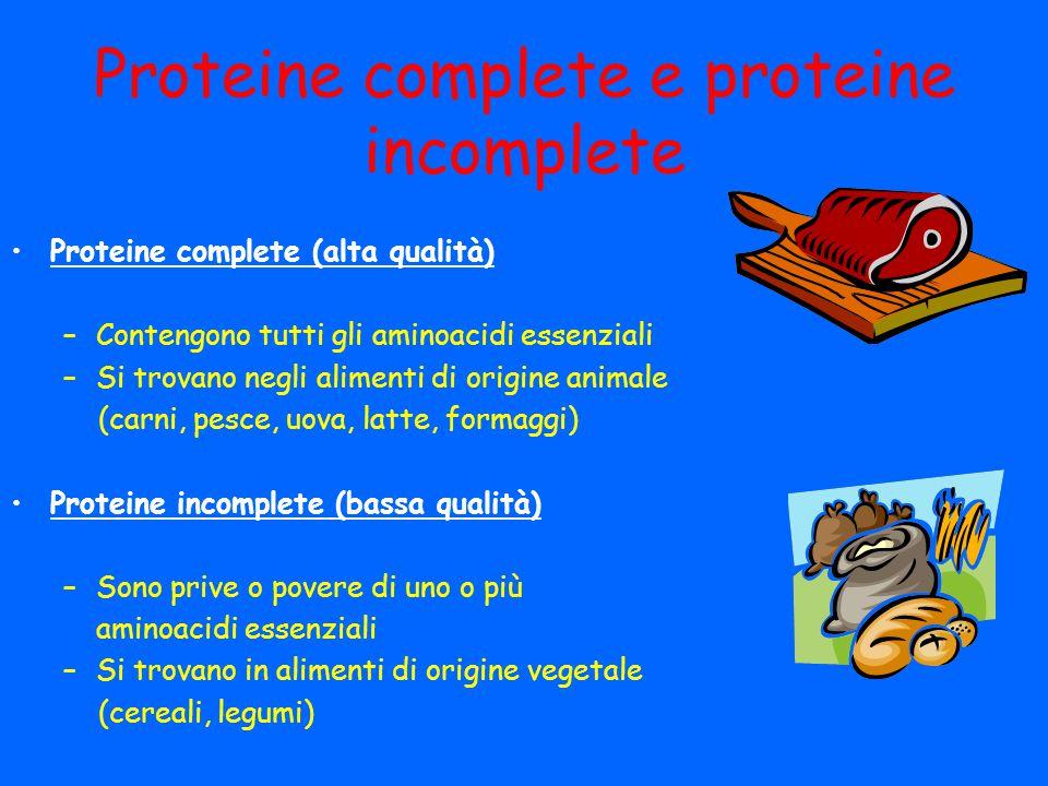Proteine complete e proteine incomplete Proteine complete (alta qualità) –Contengono tutti gli aminoacidi essenziali –Si trovano negli alimenti di ori