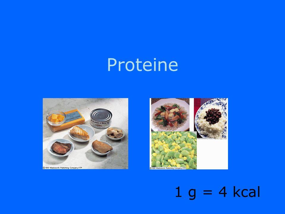 Proteine 1 g = 4 kcal