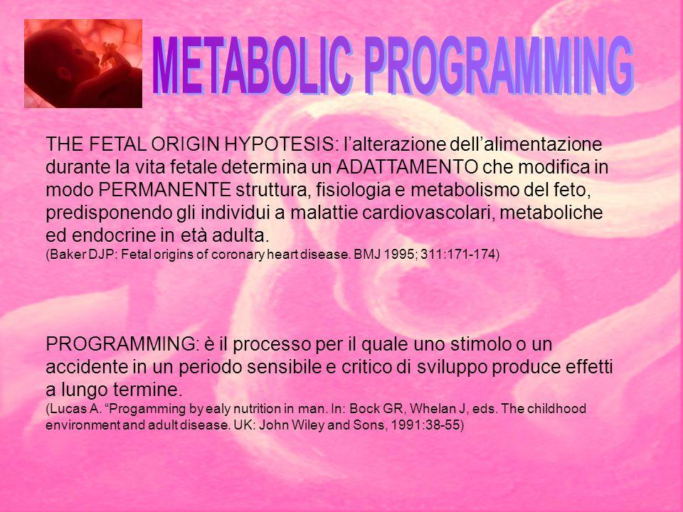THE FETAL ORIGIN HYPOTESIS: l'alterazione dell'alimentazione durante la vita fetale determina un ADATTAMENTO che modifica in modo PERMANENTE struttura