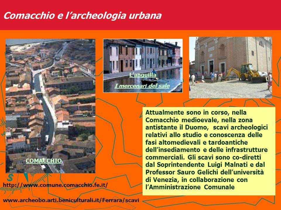Dopo le opere di bonifica della Valle Trebba, iniziate a partire dal 1919, si ha notizia dei primi ritrovamenti ascrivibili alla necropoli di Spina fin dal 1920, ma fu nel 1922 che la Regia Soprintendenza agli Scavi e ai Musei avviò le indagini archeologiche.