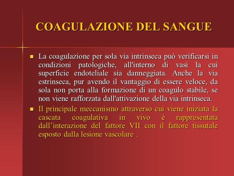 La coagulazione per sola via intrinseca può verificarsi in condizioni patologiche, all'interno di vasi la cui superficie endoteliale sia danneggiata.