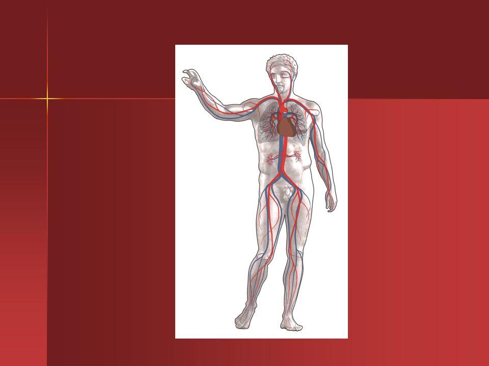 EMBOLIA Sintomatologia Sintomatologia I sintomi connessi all embolia dipendono molto dal grado di ostruzione provocato dall embolo e dalla velocità con cui esso entra in circolo.