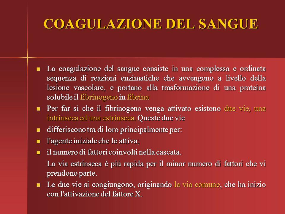 COAGULAZIONE DEL SANGUE Per evitare un'attivazione patologica, quindi non desiderata, della cascata della coagullazione, esistono meccanismi di controllo.