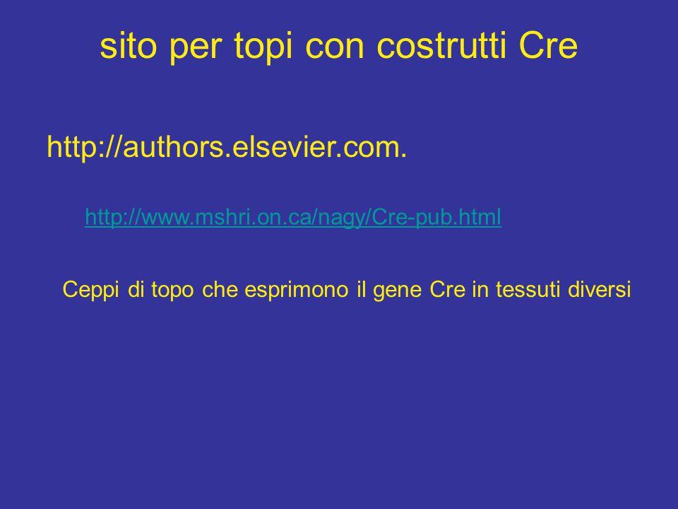 sito per topi con costrutti Cre http://www.mshri.on.ca/nagy/Cre-pub.html Ceppi di topo che esprimono il gene Cre in tessuti diversi http://authors.els