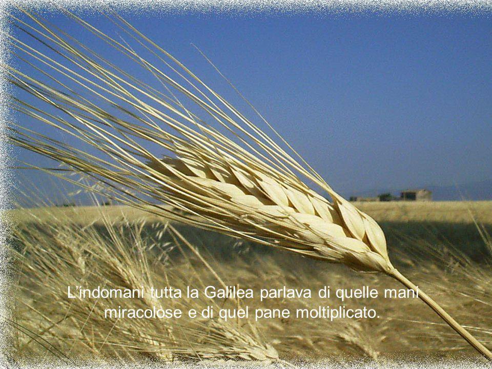 L'indomani tutta la Galilea parlava di quelle mani miracolose e di quel pane moltiplicato.