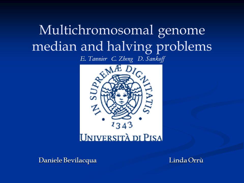 2 Multichromosomal genome median and halving problems I problemi analizzati o Median problem: Trovare il genoma G (mediano) che minimizza la distanza tra genomi dati o Halving problem: Ricostruire il genoma originario prima della duplicazione e la ricombinazione o Breakpoint problem: Individuare il numero di coppie consecutive tra due permutazioni