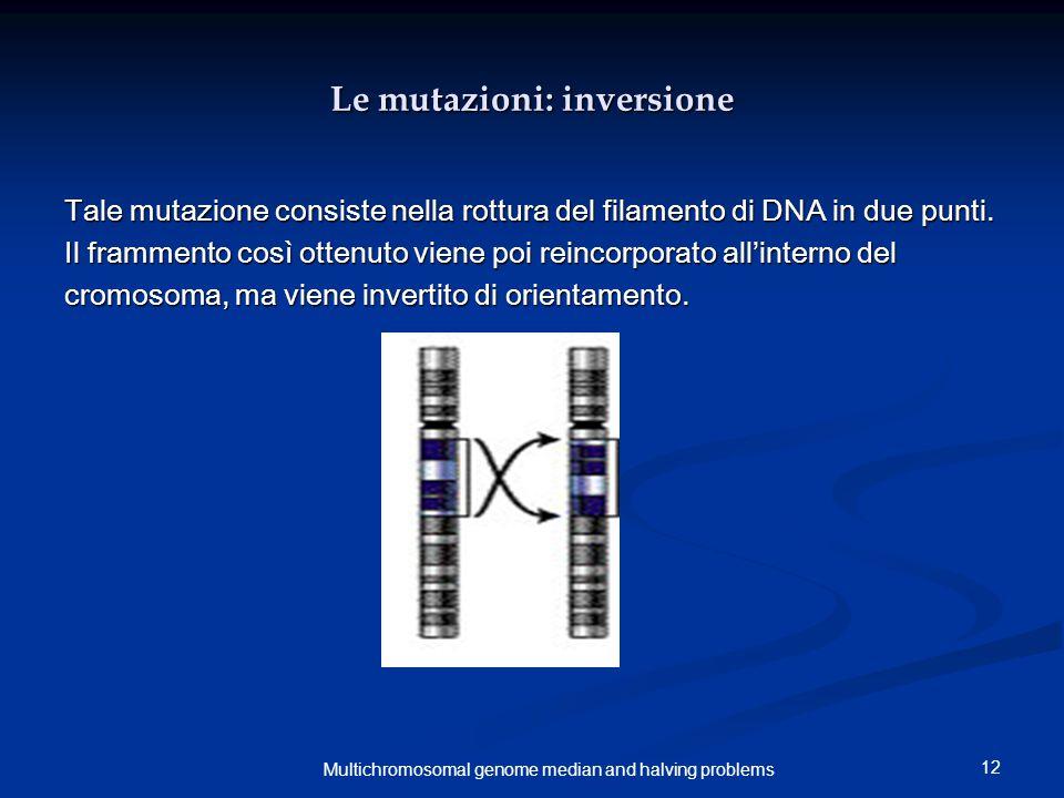 12 Multichromosomal genome median and halving problems Le mutazioni: inversione Tale mutazione consiste nella rottura del filamento di DNA in due punti.