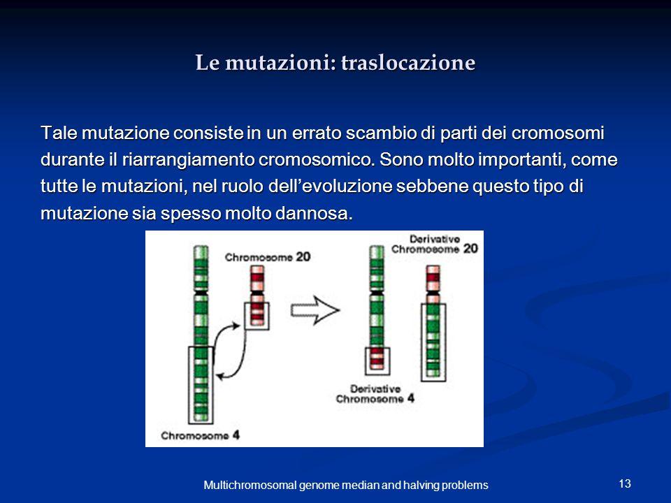 13 Multichromosomal genome median and halving problems Le mutazioni: traslocazione Tale mutazione consiste in un errato scambio di parti dei cromosomi