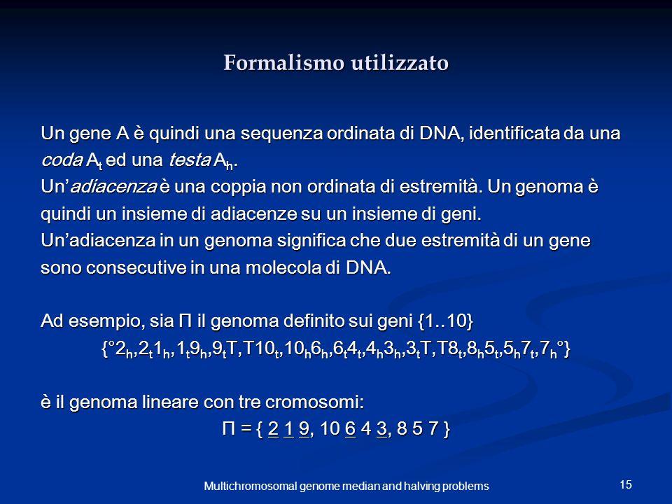 15 Multichromosomal genome median and halving problems Formalismo utilizzato Un gene A è quindi una sequenza ordinata di DNA, identificata da una coda