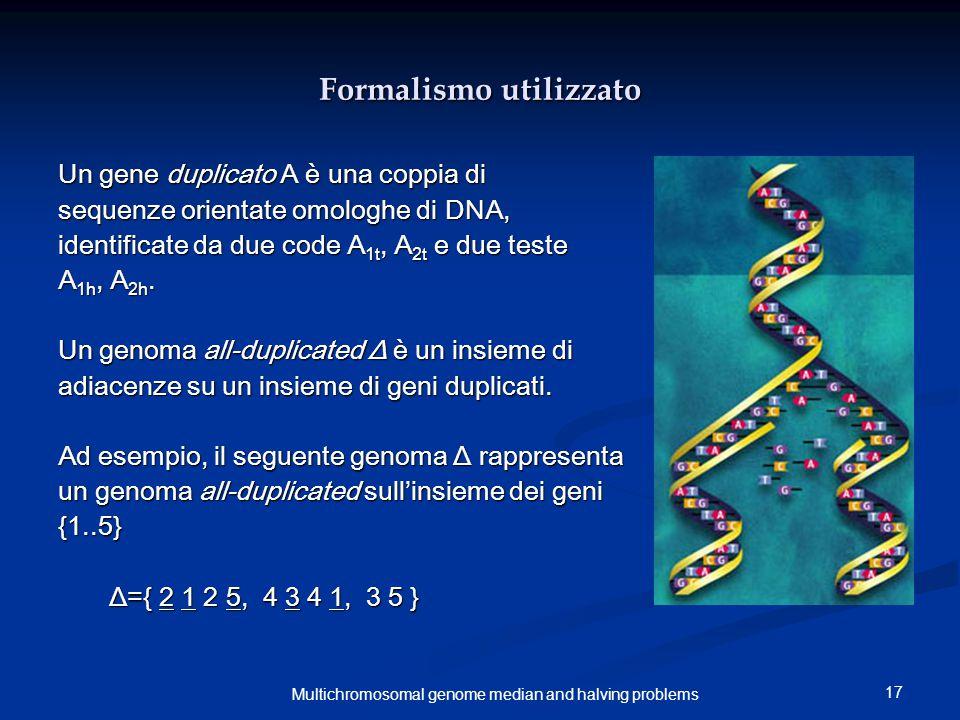 17 Multichromosomal genome median and halving problems Formalismo utilizzato Un gene duplicato A è una coppia di sequenze orientate omologhe di DNA, identificate da due code A 1t, A 2t e due teste A 1h, A 2h.