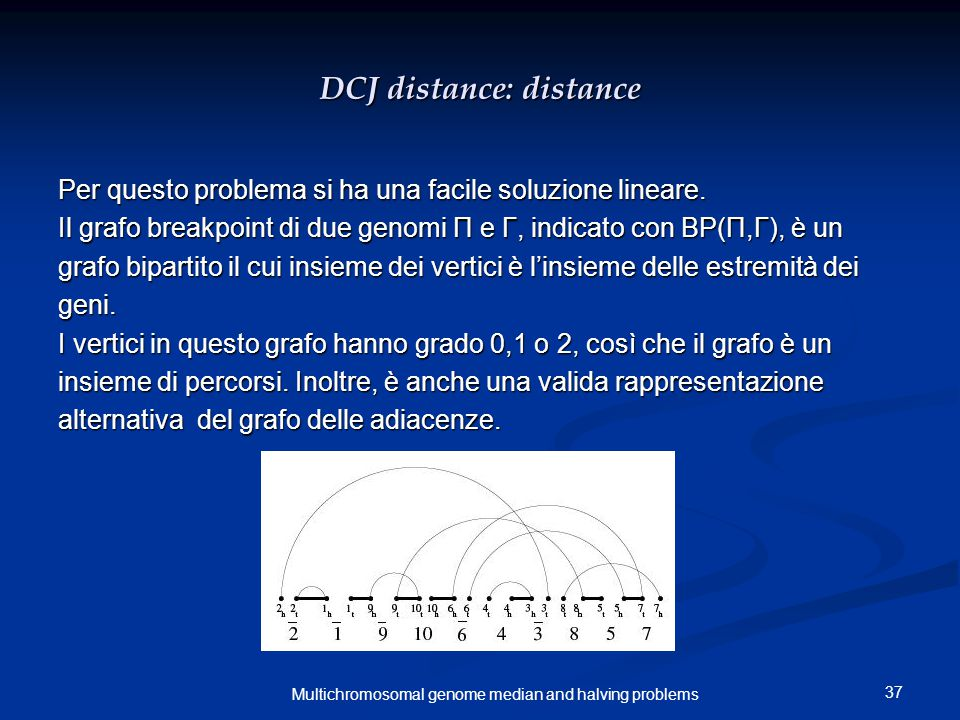 37 Multichromosomal genome median and halving problems DCJ distance: distance Per questo problema si ha una facile soluzione lineare.