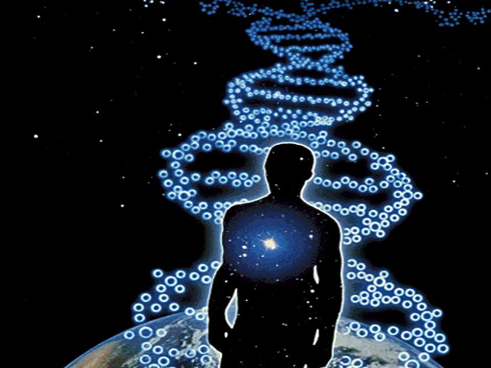 48 Multichromosomal genome median and halving problems