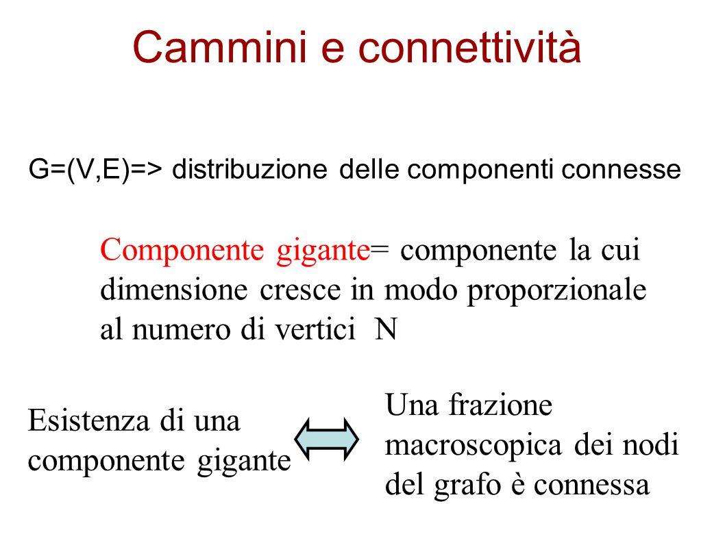 Cammini e connettività G=(V,E)=> distribuzione delle componenti connesse Componente gigante= componente la cui dimensione cresce in modo proporzionale