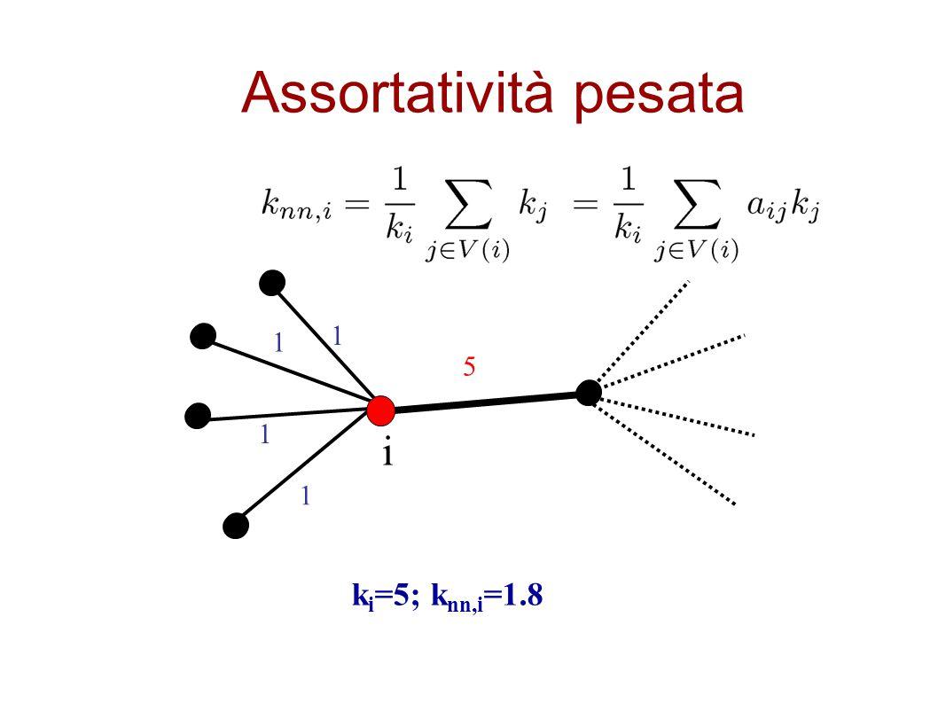 Assortatività pesata k i =5; k nn,i =1.8 5 1 1 1 1 i
