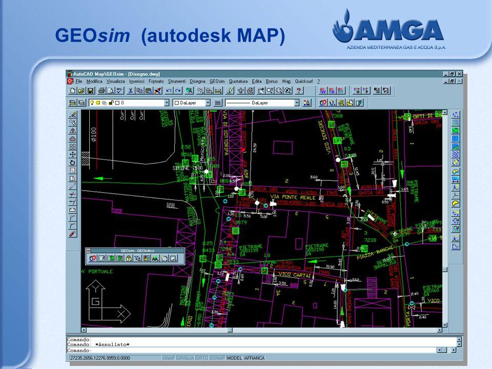 GEOsim (autodesk MAP)