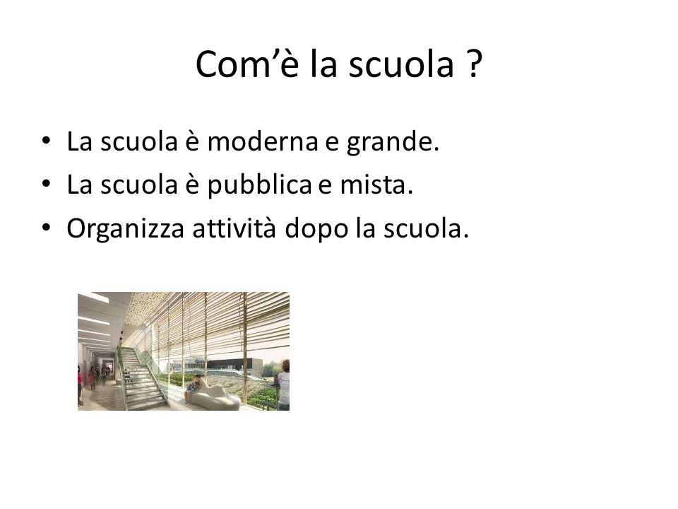 Com'è la scuola ? La scuola è moderna e grande. La scuola è pubblica e mista. Organizza attività dopo la scuola.